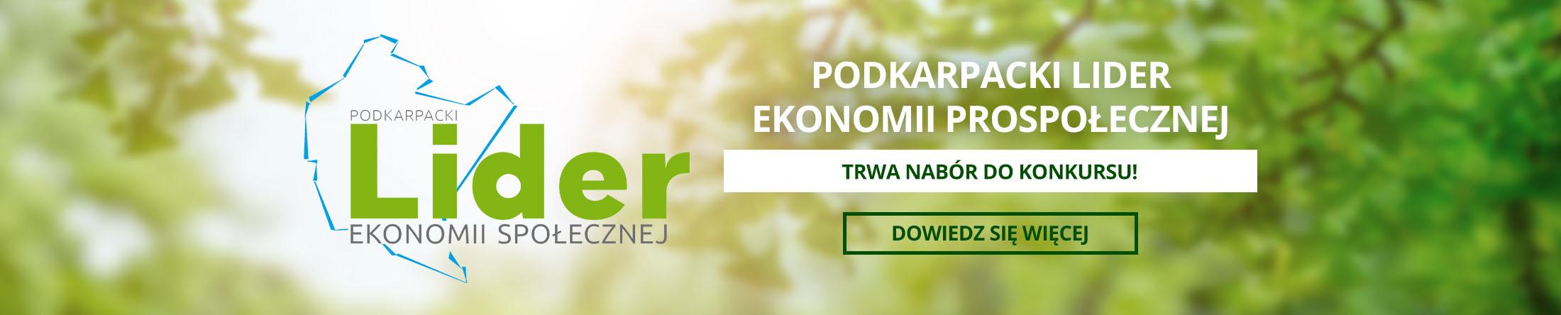 lider ekonomii społecznej
